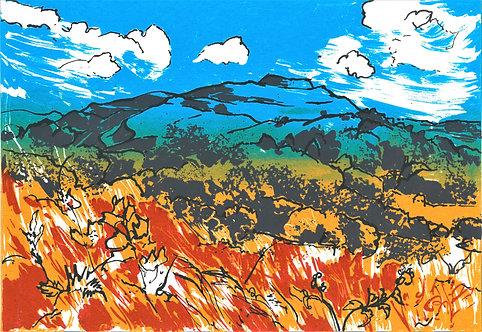"""Tia Lambert framed """" British Camp - Summer Sky"""""""