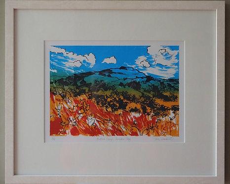 Tia Lambert ' British Camp Summer Sky' framed screen print
