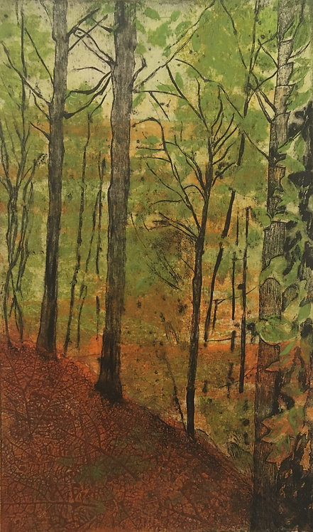 Annabelle Oppenheimer 'Six Acre Wood' collagraph