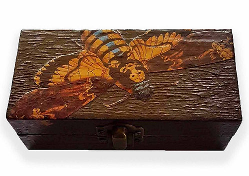 Jo Verity Deaths Head Hawkmoth Box