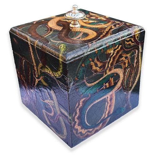 Jo Verity Snake box