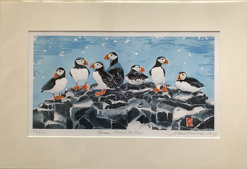 """Marie Therese King print """" Farne Island Puffins"""""""
