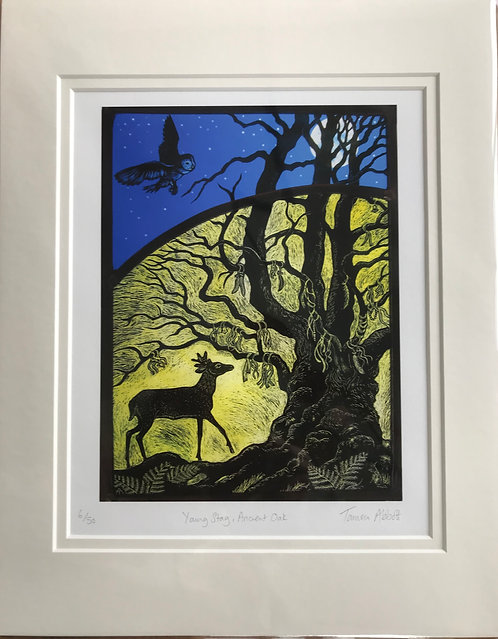 Tamsin Abbott ' Young Stag, Ancient Oak'print