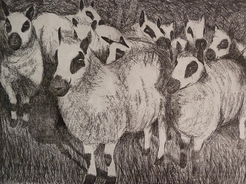 """Annabelle Oppenheimer """"Pete's Mob'etching"""