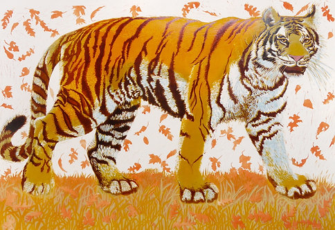 Julia Manning 'Tiger Tiger' limited edition print