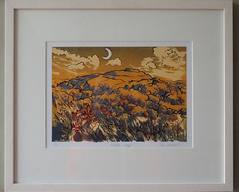 Tia Lambert 'British Camp' framed screenprint