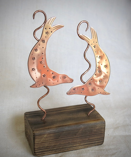Amanda Rawling swimming copper seals
