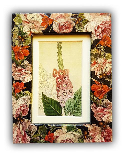 Jo Verity roses and nasturtium frame.
