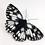 Thumbnail: Vikki Lafford Garside Marbled White butterfly brooch