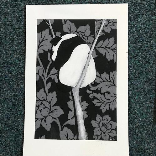 Kenji Lim giclee print of Panda in a cleft
