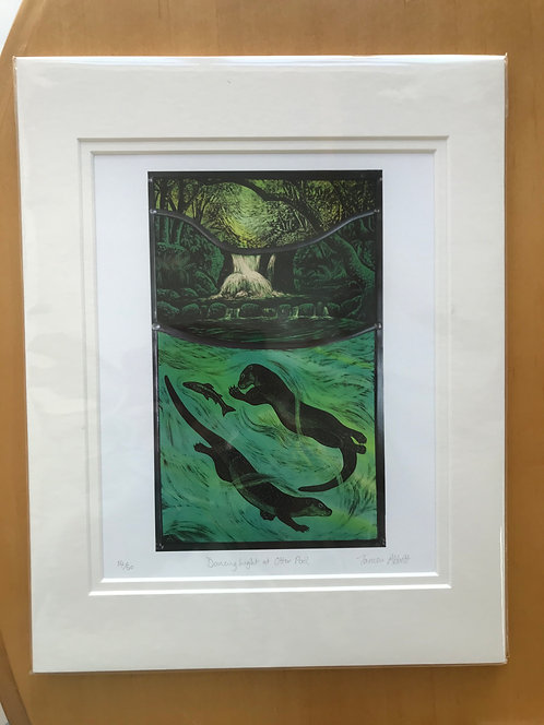 "Tamsin Abbott limited edition print "" Otter Pool"""