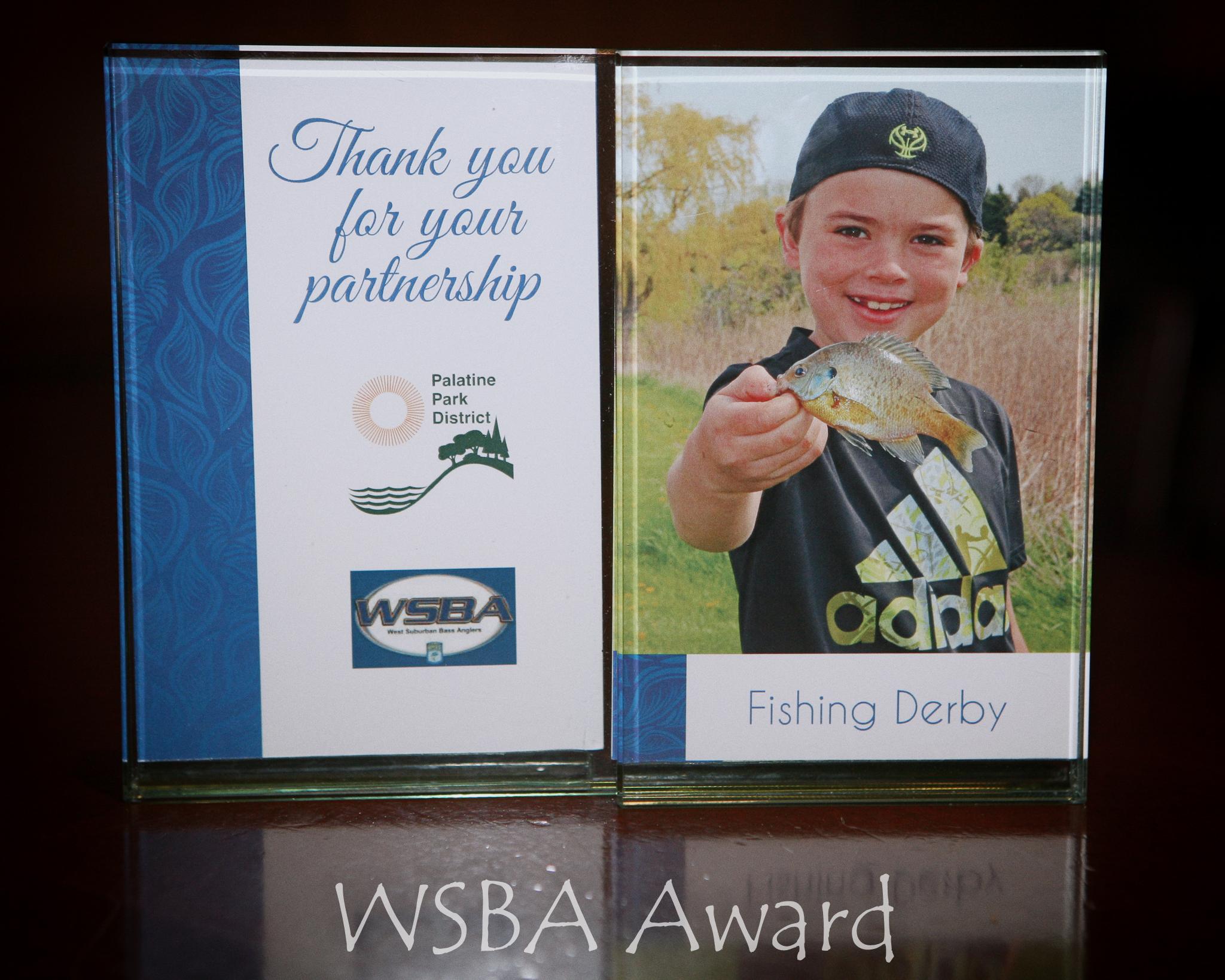 WSBA award