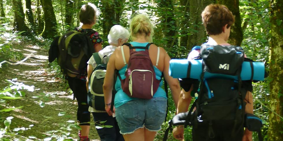 Balades en nature: sophrologie et ateliers intuitifs
