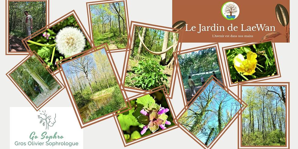 Sophrologie Jardin de LaeWan