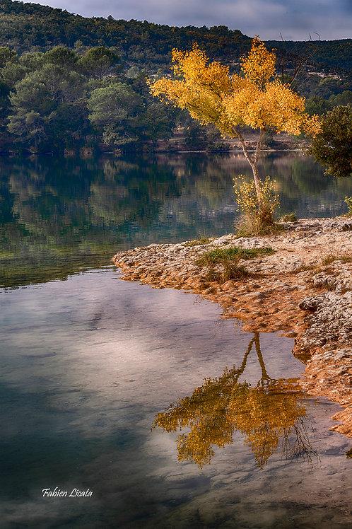 automne_FLP9356