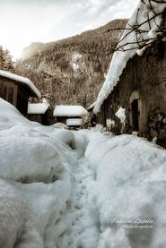 neige_FLP8598.jpg