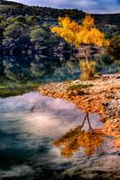 automne_FLP9356_50x75cm