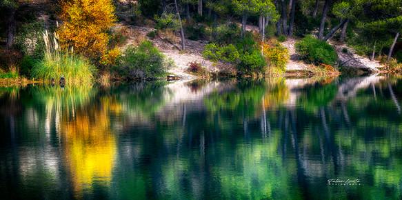 automne_FLP9367_50x100cm
