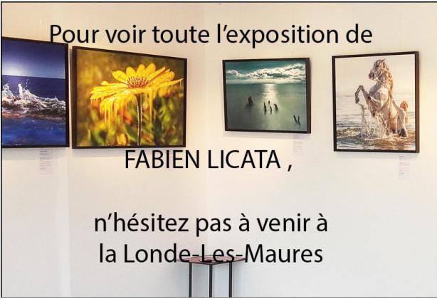 Crédit photo / Michel Lecocq
