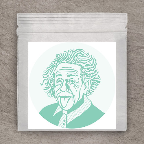 Einstein Teal Sticker