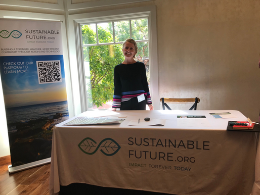 Sustainable Future and Green Businesses
