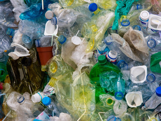 The 7 Rs to Help You Live a Plastic-Free Life
