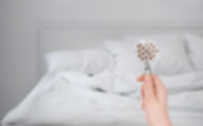 bed-bug.jpg