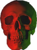 Skull isolated.png