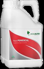 RealNutri_Powercal.png