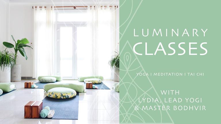 WELLNESS CLASSES - YOGA, MEDITATION, TAI CHI / QI GONG