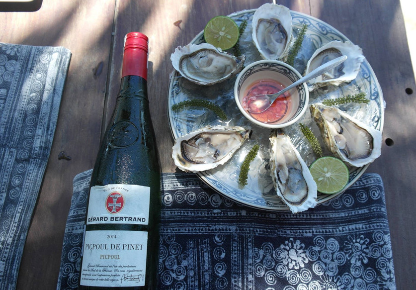 The Hmong Sisters - Oysters