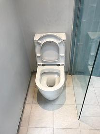 toilet in wetroom.JPG