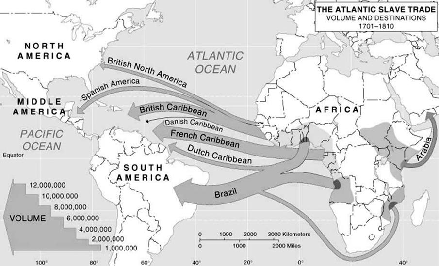 3_slavesmap_NB_300.tif