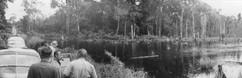 Étangs de pisciculture INEAC