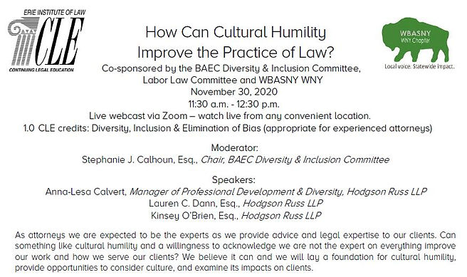 cultural humility.JPG