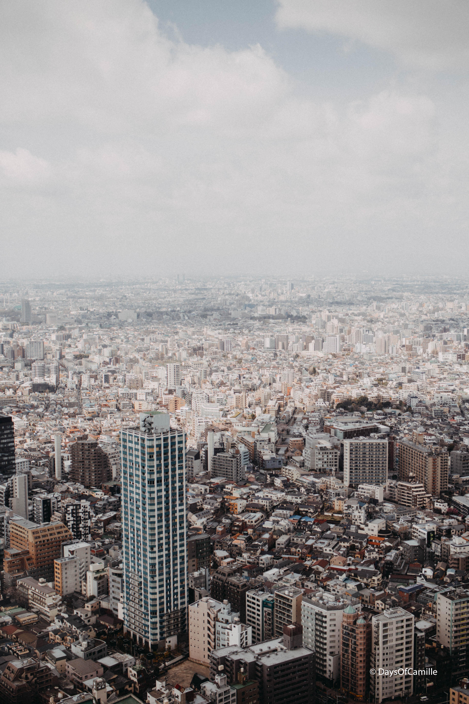 Shinjuku(3)