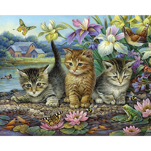 PUZZLE 1000 CURIOUS KITTENS