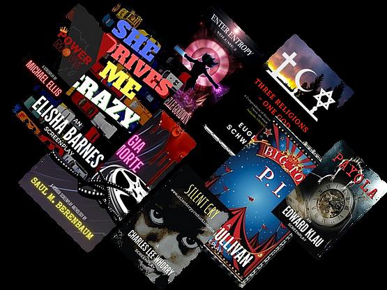 Dizzy Emu Publishing books