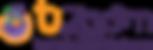 Logo + typo Tizoom.png
