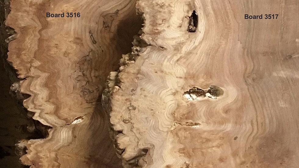English Burr Elm wood boards