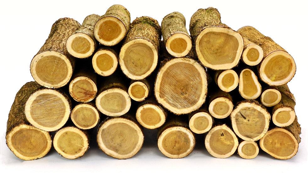 Mulberry Log Blanks