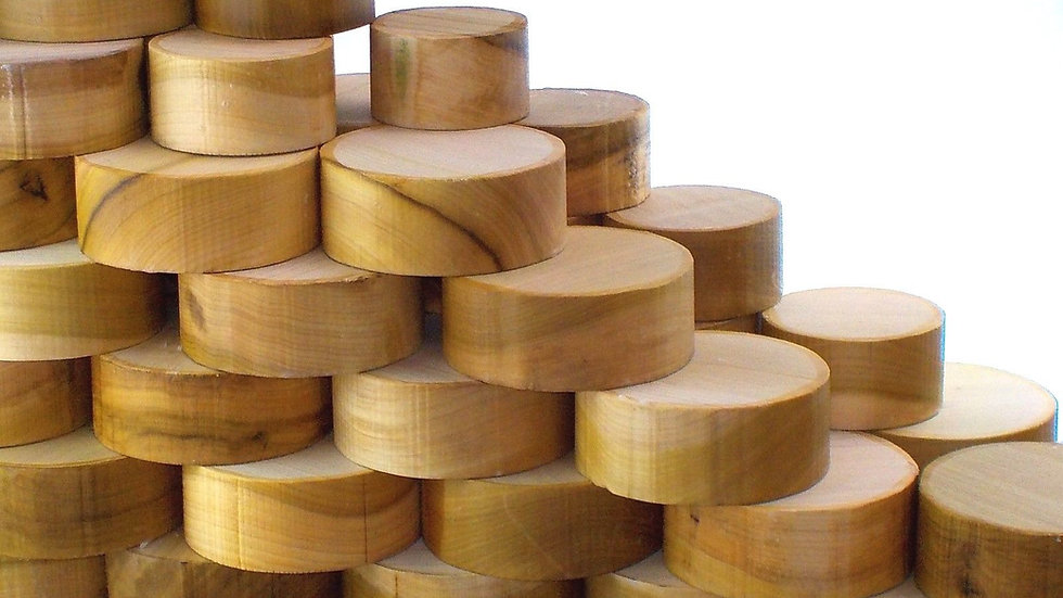 Tulipwood Bowl Blanks - 50mm thick. Pack of 2