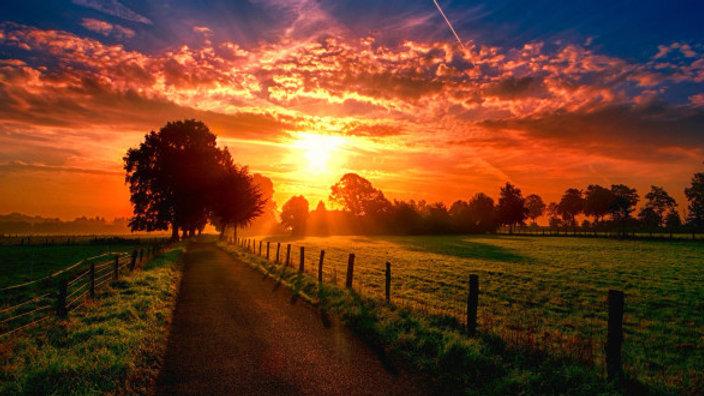 Solstice : Le jour le plus long