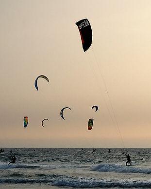 Kite Pixabay 4.jpg