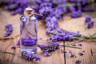 lavender-essential-oil_grande.jpg