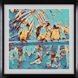 Parrots Perch sm