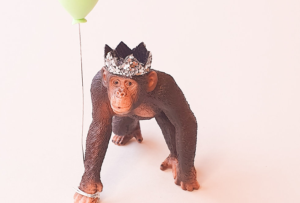Bonzo the Chimpanzee