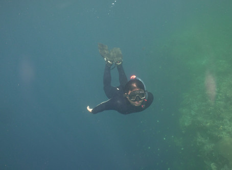 Sekolah Laut: Kelas Selam Bebas/Free Dive