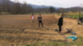 spring planting, larger CSA field.JPG