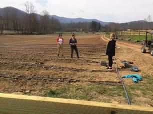 The large CSA garden at Creekside Farm